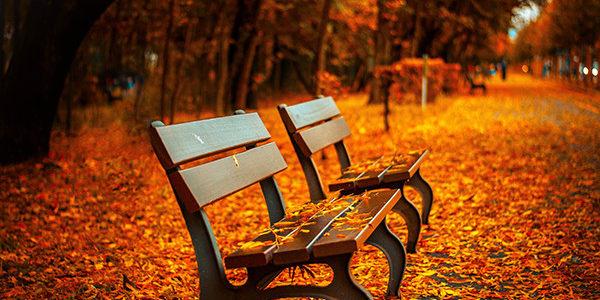 Ájurvéda és az évszakok – Ősz
